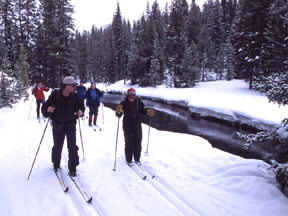 Cross-Country skiers on Lone Star Trail