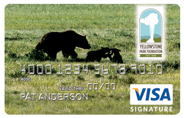Bear and Cubs Credit Card