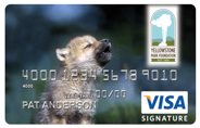 Wolf Pup Credit Card