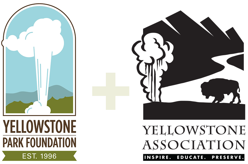 Yellowstone Forever Merged