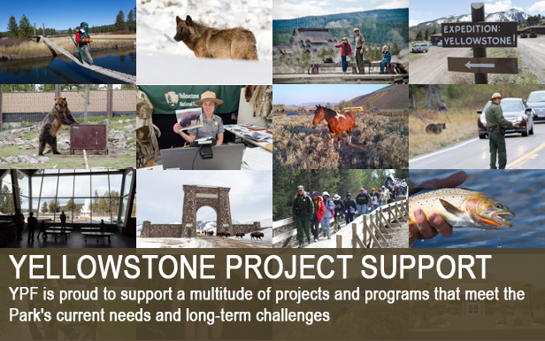 Yellowstone Project Support