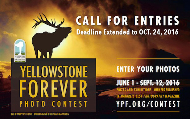 Yellowstone Forever Photo Contest 2016
