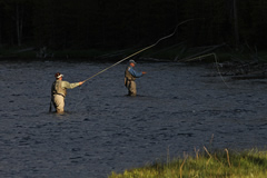 Fly fishing volunteers