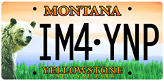 Yellowstone license plate